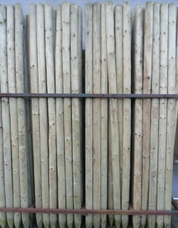 Pencil Posts from Dunwiley Nurseries & Garden Centre, Stranorlar, Co. Donegal, Ireland